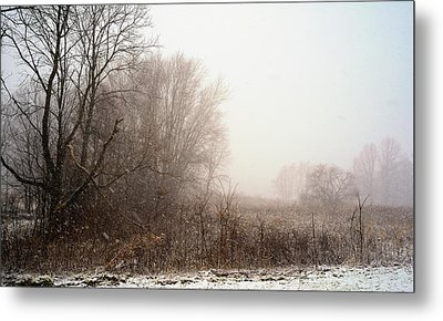 First Snow Of Winter Metal Print by Dick Wood