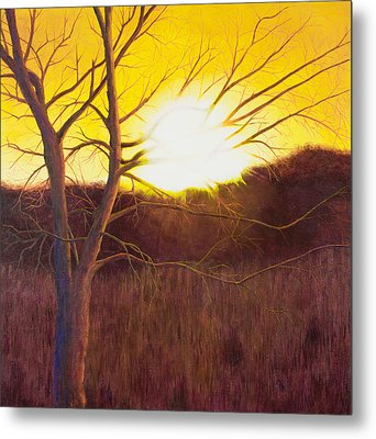 First Sunset Of Spring Metal Print by Garry McMichael