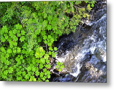 Fish Creek In Summer Metal Print by Cathy Mahnke