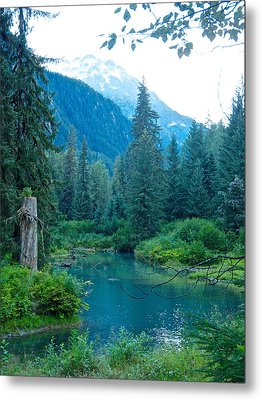 Fish Creek In Tongass National Forest By Hyder-ak  Metal Print by Ruth Hager