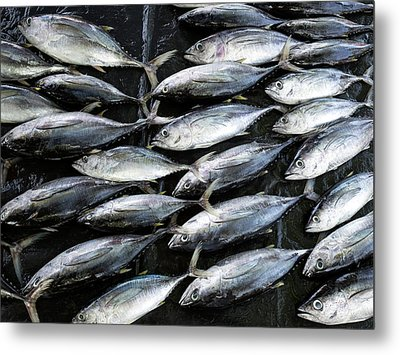 Fish For Sale In Open-air Market Metal Print by Panoramic Images