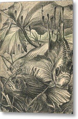 Fish Haven Metal Print