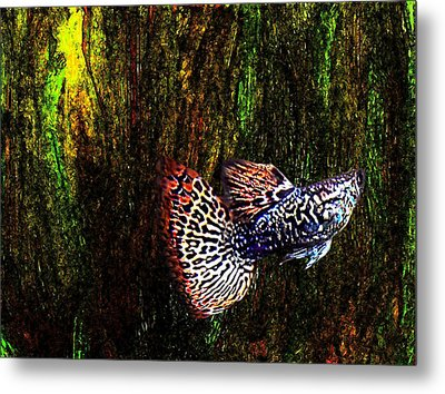 Fish Kingdom Colors  Metal Print by Mario Perez