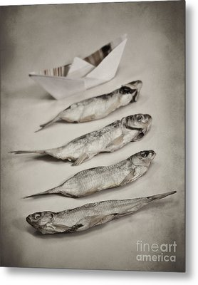 Fish Out Of Water Metal Print by Diana Kraleva