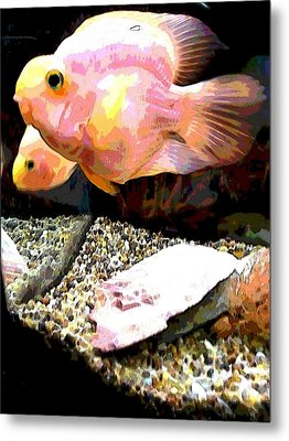 Fish Metal Print by Sarah E Kohara