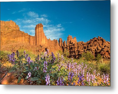 Fisher Towers Evening Metal Print by Michael J Bauer