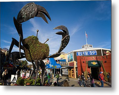 Fishermans Wharf Crab Metal Print