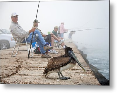 Port Aransas Texas Metal Print by Mary Lee Dereske