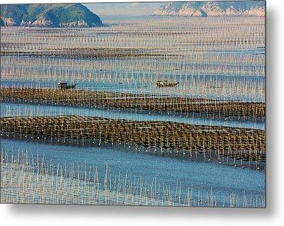 Fishing Boat Sailing Through Bamboo Metal Print