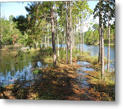Fishing Hole Metal Print by Joanne Askew