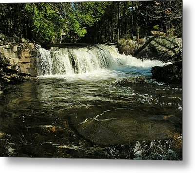Metal Print featuring the photograph Fishing Hole by Sherman Perry