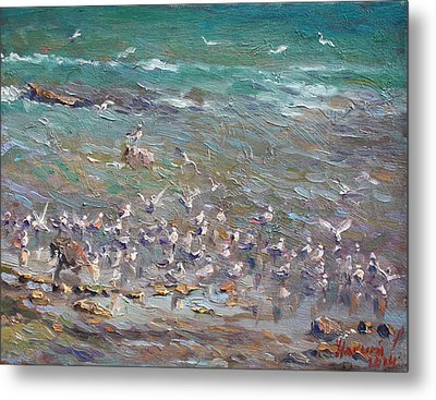 Fishing Time Metal Print by Ylli Haruni
