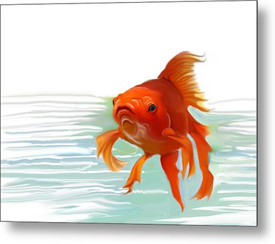 Fishy Fishy Fish Metal Print by Christian Kolle