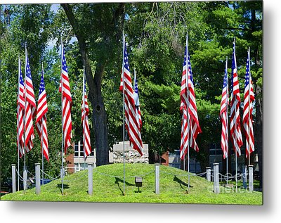 Flag - Illinois Veterans Home - Luther Fine Art Metal Print by Luther Fine Art