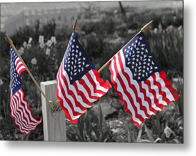 Flags Metal Print by Mary Burr