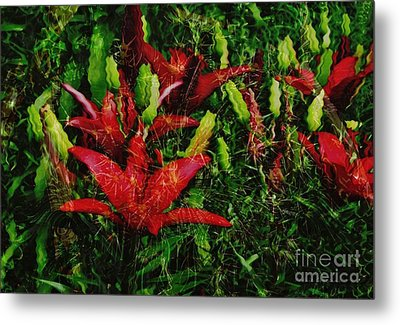 Metal Print featuring the photograph Flames by Kathie Chicoine