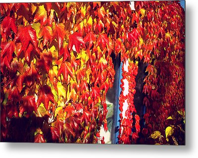 Metal Print featuring the photograph Flaming Autumn Leaves by Art Photography