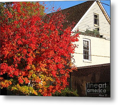 Metal Print featuring the photograph Flaming Fall Colours On Farm House by Nina Silver