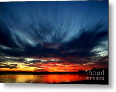 Flaming Hues Metal Print by Theresa Willingham