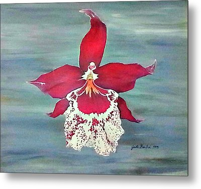 Flaming Orchid Metal Print