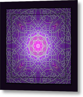 Metal Print featuring the photograph Flamingline by Barbara MacPhail