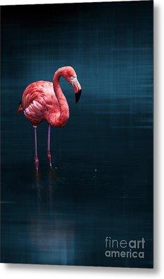 Flamingo - Blue Metal Print by Hannes Cmarits