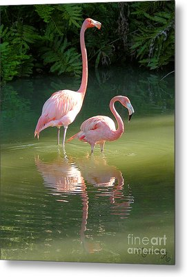 Flamingo Stroll Metal Print