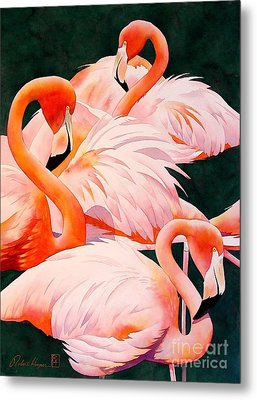 Flamingos Metal Print by Robert Hooper