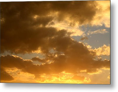 Metal Print featuring the photograph Fleeting Gold by Amanda Holmes Tzafrir