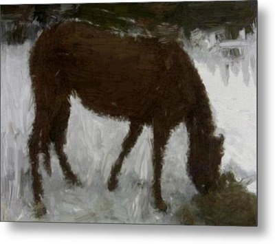 Metal Print featuring the painting Flicka by Bruce Nutting