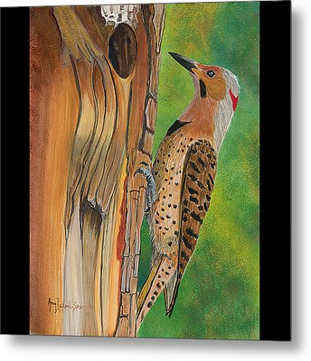 Flicker Metal Print by Amy Reisland-Speer