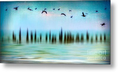 Flight - A Tranquil Moments Landscape Metal Print by Dan Carmichael