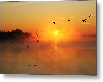 Flight At Sunrise Metal Print