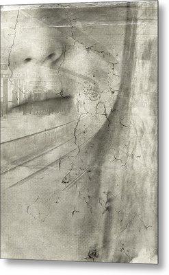 Flight Metal Print by Chantal Scholten