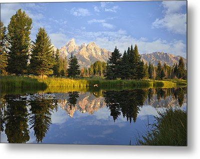 Flight In The Tetons Metal Print