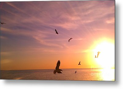 Flight Into The Light Metal Print by Chris Tarpening
