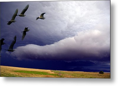 Flight Into The Storm Metal Print