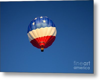 Flight Of The Patriot Metal Print by Mike  Dawson