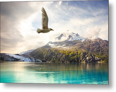 Metal Print featuring the photograph Flight Over Glacier Bay by Janis Knight