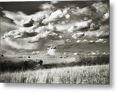 Flint Hills Prairie Metal Print by Thomas Bomstad