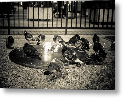 Flockin' Around The Fire Metal Print by Melinda Ledsome