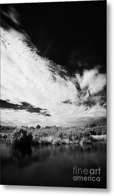 Flooded Grasslands And Mangrove Forest In The Florida Everglade Metal Print by Joe Fox