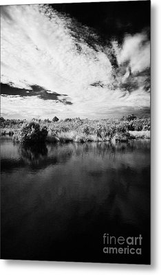 Flooded Grasslands And Mangrove Forest In The Florida Everglades Metal Print