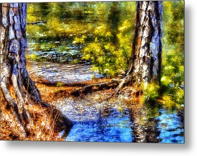 Flooded Roots Metal Print by Daniel Eskridge