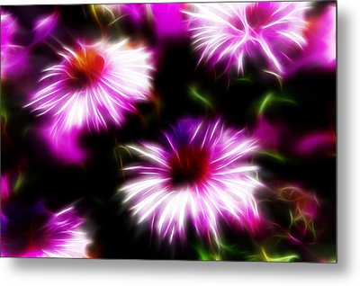 Metal Print featuring the photograph Floral Fireworks by Selke Boris