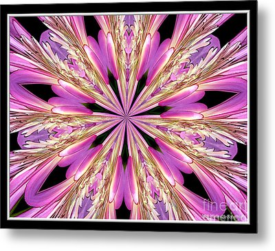 Metal Print featuring the photograph Floral Kaleidoscope  Waterlily by Rose Santuci-Sofranko