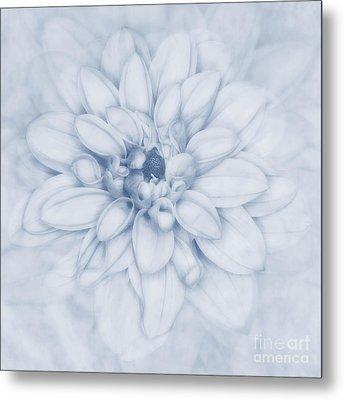 Floral Layers Cyanotype Metal Print by John Edwards