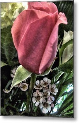 Floral Mix One Red Rose Metal Print by Danielle  Parent