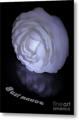 Floral Reflections 4 - Camellia Metal Print by Kaye Menner