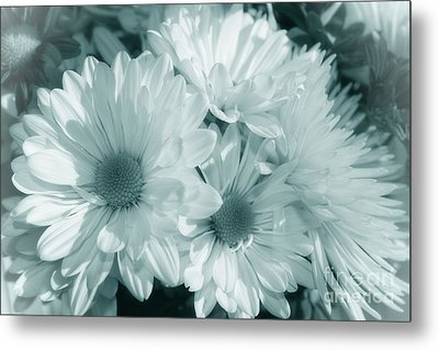 Metal Print featuring the photograph Floral Serendipity by Cathy  Beharriell